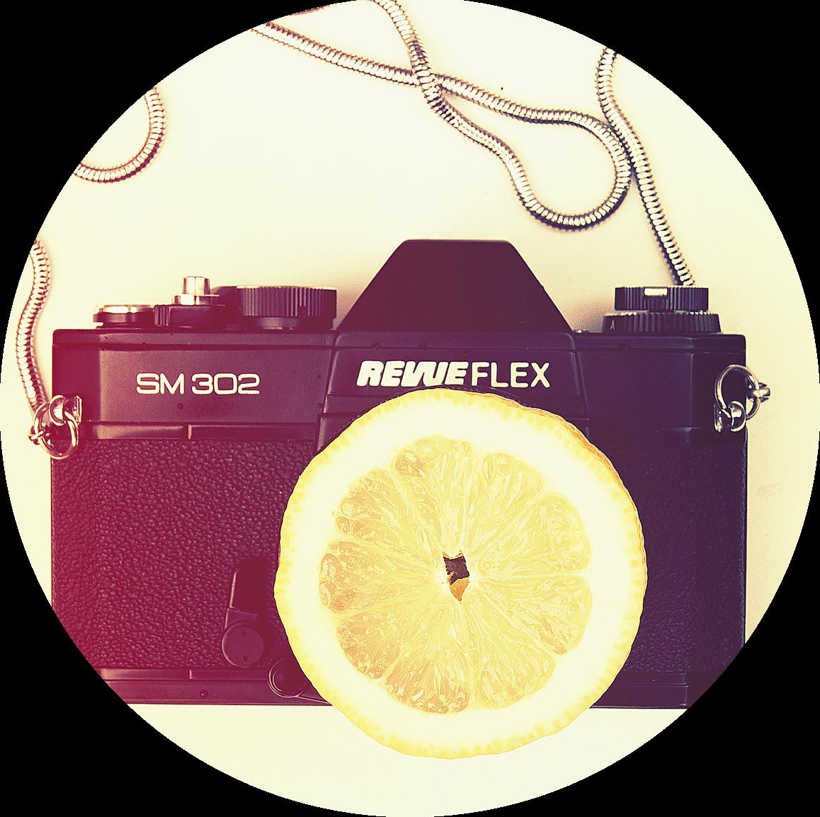 lemon pic_web_circle
