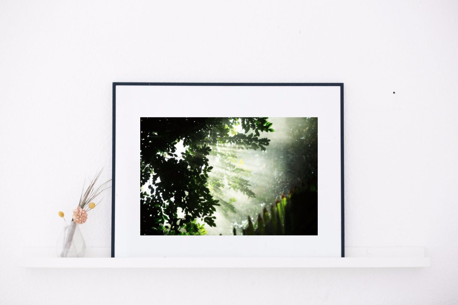 Fine Art Print – Botanic Dream