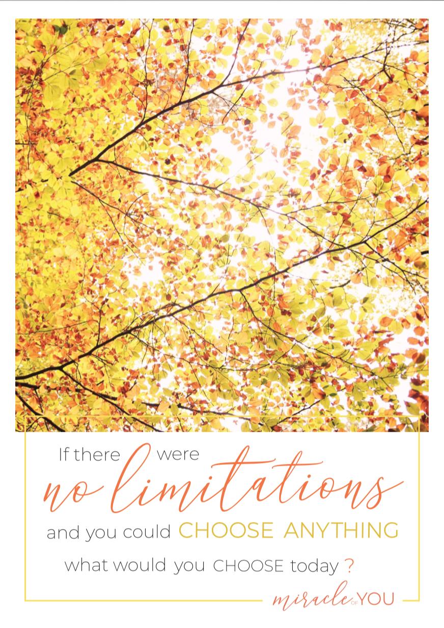 No Limitations Poster